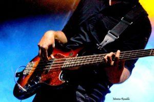 Dire Straits Over Gold, Young Festival Albignasego 2017, Francesco Piovan